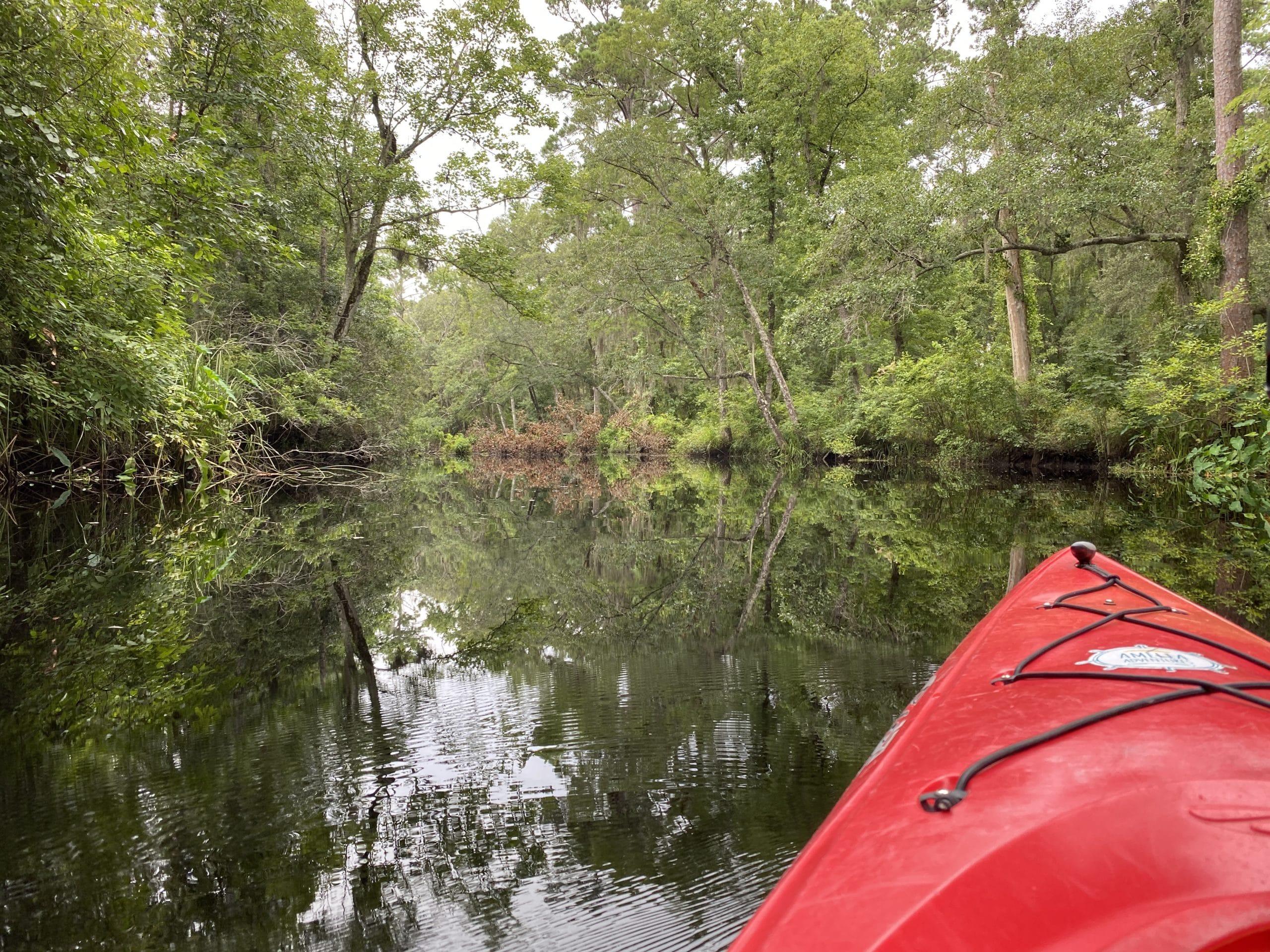 Amelia Island Kayak Rental Lofton Creek