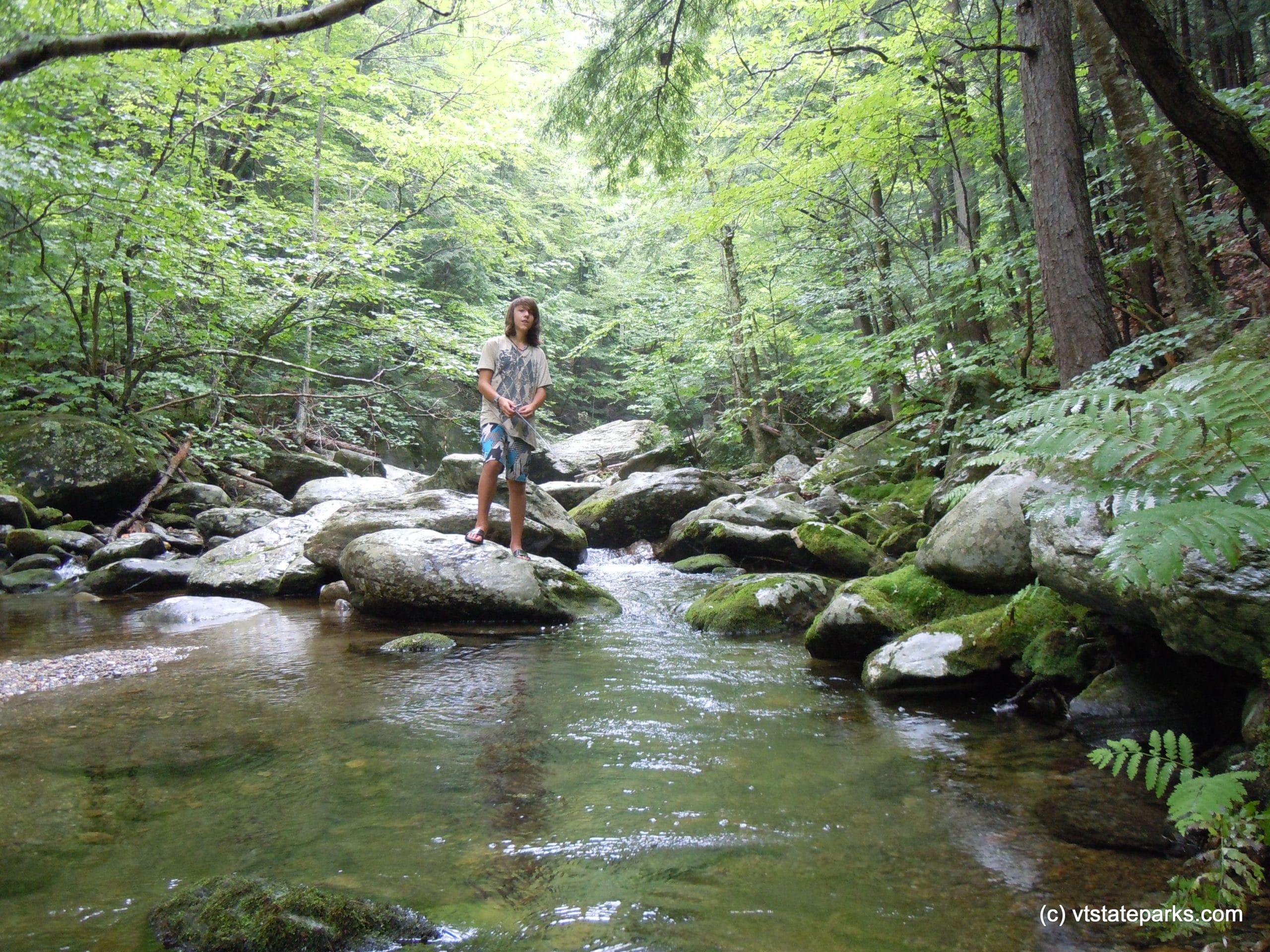 cobb brook jamaica state park