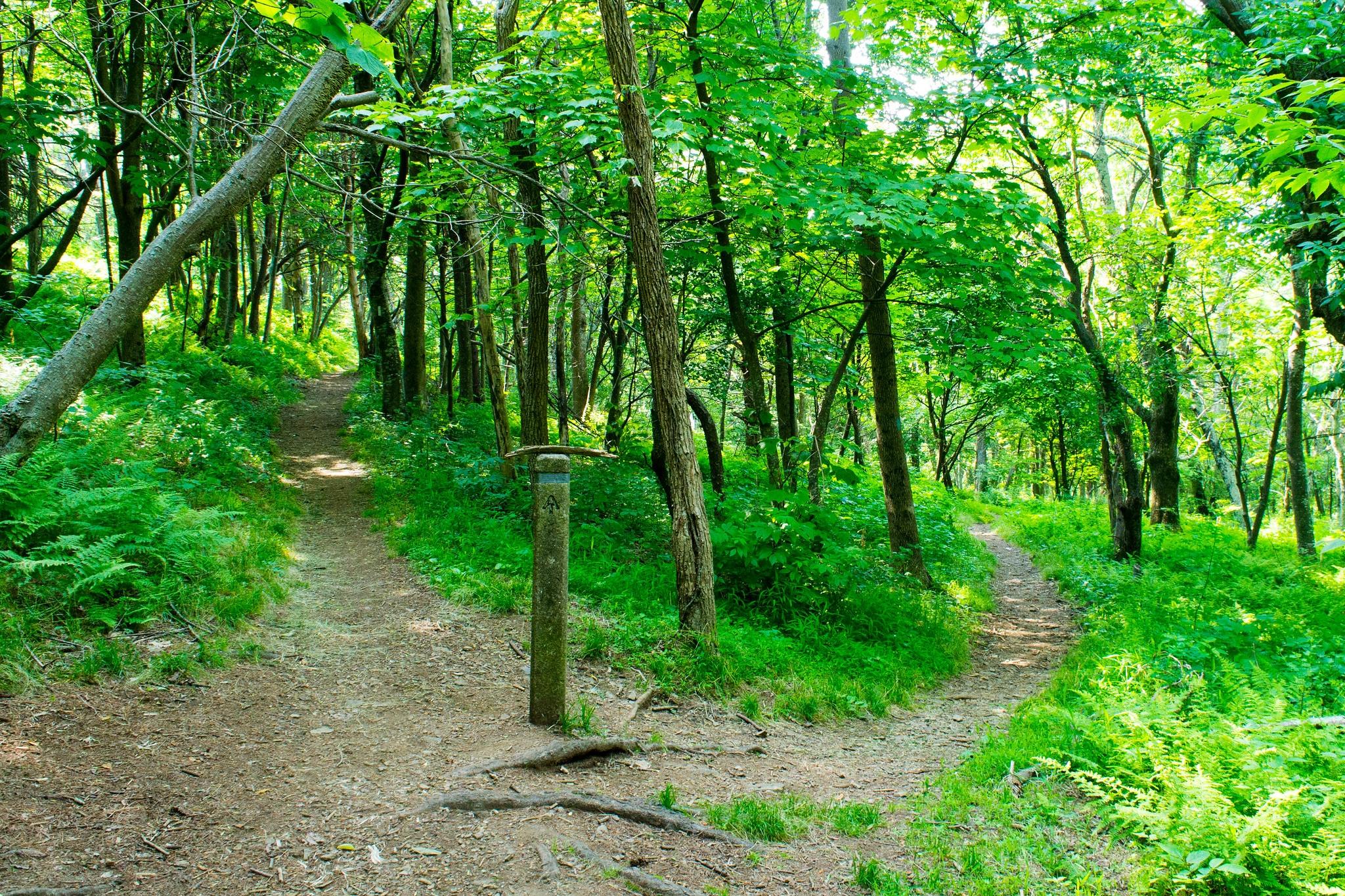 shenandoah national park appalachian trail